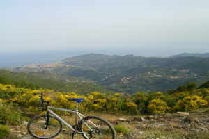 Ricciardi Bicycle Rentals in Liguria