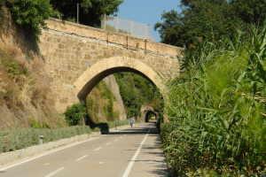 Cicli Bosco Luca Cykeludlejning i Ligurien
